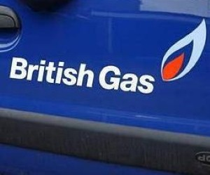British Gas has cut the cost of electricity by five per cent today
